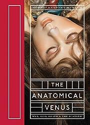 The Anatomical Venus: Wax, God, Death & the Ecstatic
