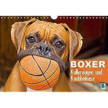Suchergebnis Auf Amazonde Für Boxer Hunde Bücher