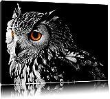 Dark Eule mit orangen AugenFormat: 60x40auf Leinwand, XXL riesige Bilder fertig gerahmt mit Keilrahmen, Kunstdruck auf Wandbild mit Rahmen, günstiger als Gemälde oder Ölbild, kein Poster oder Plakat