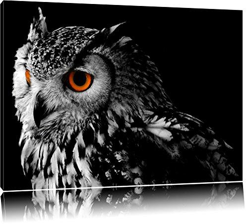 Dark Eule mit orangen AugenFormat: 120x80auf Leinwand, XXL riesige Bilder fertig gerahmt mit Keilrahmen, Kunstdruck auf Wandbild mit Rahmen, günstiger als Gemälde oder Ölbild, kein Poster oder Plakat