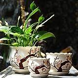 SUNA Keramische Blumen-Blumentopf, Lehm, Einfacher Entwurf Sukkulenter Blumentopf/Kaktus Blumentopf mit mit Behälter