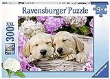 Ravensburger Puzzle 13235dolce cane nel cestino