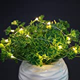 Tomtopp 2pcs Wine Cork Starry Lights 15LED 1.4m Warm White And Colorful