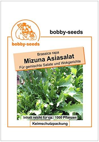 Bobby-Seeds Salatsamen Pflücksalat Mizuna Asiasalat Portion