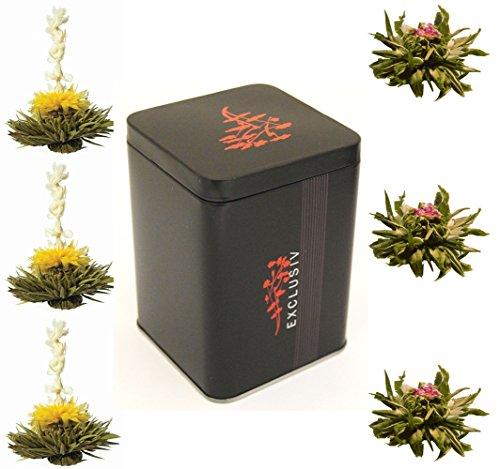 black-exclusiv-boite-de-6-thes-noirs-fleurs-de-the-dans-une-elegante-boite-dechantillons-manuel-fran