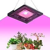 Oeegoo LED Pflanzenlampe 50W, fortgeschrittenes volles Spektrum 50W IP65 Wasserdicht führte Betriebslicht-hängende Lampe für Gewächshaus-Wasserkultur-Innenanlagen, die Veg und Blume wachsen