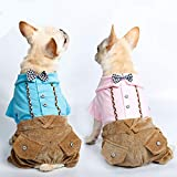 LOVEPET Dog Gentleman Four-legged Clothes Puppy Dog Clothes VIP Teddy Autumn And Winter Keep Warm Pet Clothing 2 Pcs