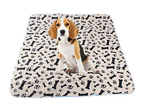 Modo Tappetino da Viaggio e addestramento per Cani, Lavabile e Riutilizzabile (Confezione da 2)