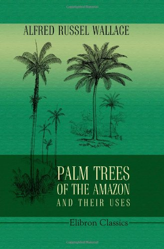 Palm Trees of the Amazon and Their Uses