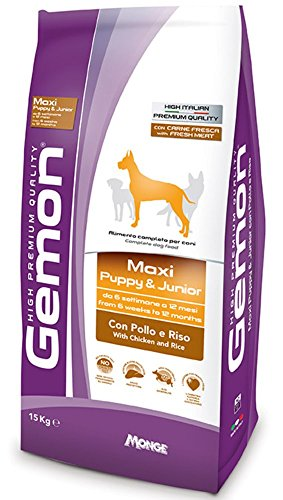 Gemon Maxi Puppy Junior 15 Kg