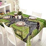 REQATABLECLOTH Nappe Rectangulaire Impermeable Herbe De Zèbre Nappe pour Table Basse en Jardin Enfant Anniversaire 150x180cm