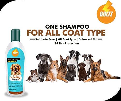 Boltz Dog Shampoo for Healthy Shiny Coat with Aloe Vera,Lavender and Jojoba Oil