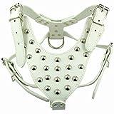 Leder Hundegeschirr mit Nieten für große Hunde Hunter Anti Zug Halsumfang: 42-65cm Brustumfang: 65-85cm Einstellbar Weiß