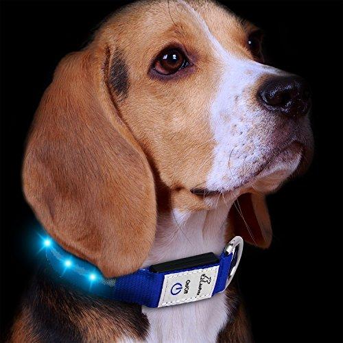Kleiner Hund Kragen E (Hunde Leuchthalsband LED Blinkhalsband Leuchtendes Halsbänder, JuzPetz Wiederaufladbare LED Hunde Sicherheits Halsband Hundehalsband Leuchtender Nacht Hundeband Reflektierende, blinkende sichtbare Kragen [Wasserbeständigkeit | 3 leuchtende Modi | Schnelle Freigabe Wölbungs] Einstellbare Hellem Halsband für Haustier mit USB Ladekabel - Klein [29-38 cm] - Blau)