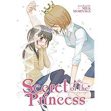 Secret of the Princess (English Edition)