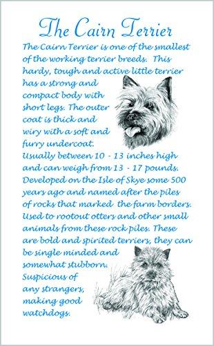Cairn Terrier Cane-regalo unico razza fatti in microfibra strofinacci.