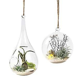 mkono lot de 2 vase suspendu de verre boule pour fleur. Black Bedroom Furniture Sets. Home Design Ideas