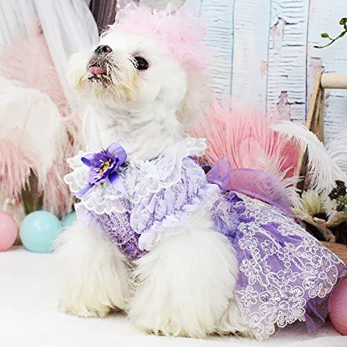 WHZWH Pet Hochzeitskleid, Puppy Dog Princess Kleider lila Pailletten Dekoration drucken Dekoration Geeignet für Halloween, Hochzeit, Neujahr Fotografie,M (Drucken Sie Halloween-dekorationen)