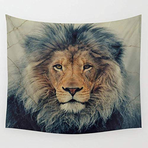 e Lion King Wall Tapestry Hanging Tapestries Wall Art Bed Sofa Dust Cover,Beach Blanket,Pick Nick Blanket,Table Cloth 60X80 inches ()