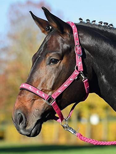 Busse Halfter Einhorn II pink, Vollblut