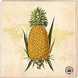 Kew Gardens - Untersetzer Motiv Ananas (2er Set)