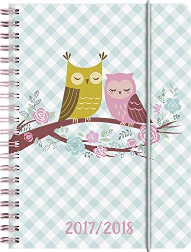 Preisvergleich Produktbild Brunnen 1072965038 Schülerkalender Eule (1 Woche in 2 Seiten, August 2017 bis Juli 2018)