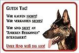 Schild Vorsicht Deutscher Schäferhund 'Wir kaufen nichts' 15x20 oder 20x30 (20x30cm)