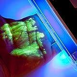 SpyShop UV Lampe/Schwarzlicht Lampe für kriminalistische Pulver   Flecken Finder   Geldscheine Schmuck markieren   Dieb überführen   Prüfgerät uv markierungspulver