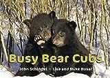 Busy Bear Cubs (A Busy Book)