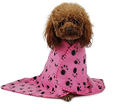 Pet Blanket for small dogs and cats