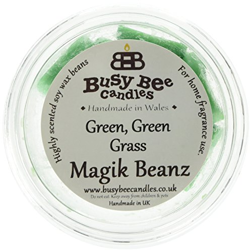 busy bee candle magik