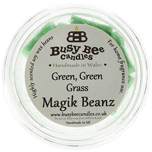 Scheda dettagliata Busy Bee Candles Magik Beanz Erba, Colore: Verde, Confezione da 6