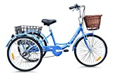 Best Tricicli adulti - JORVIK TRICYCLES Jorvik tricicli Jorvik 24vintage stile olandese Review