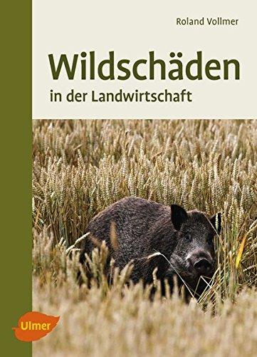 Wildschäden: In der Landwirtschaft