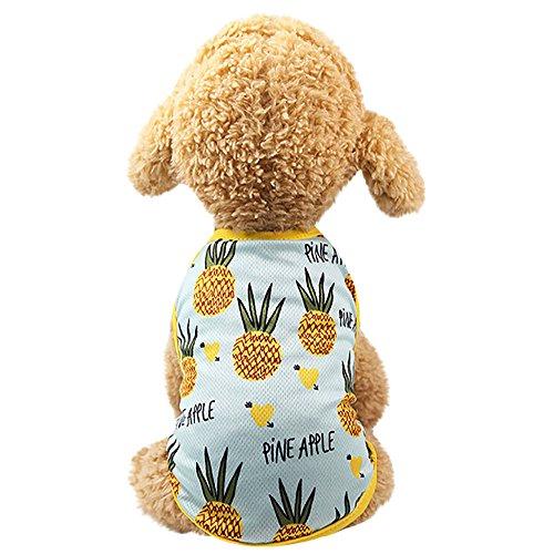 Smniao Haustier Hund Kleidung Erdbeer Ananas Gedruckt Weste Hund Kostüme Kleiden Rock Teddy Welpen Katze T-Shirt(Licht Blau. XS)
