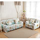 BESTVECH Stretch Slipcover Big Elastic Printed Sofa Furniture Cover (3#)(2 Seats)