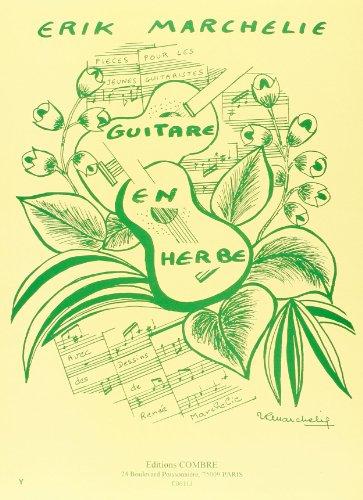 guitare-en-herbe-15-pices-pour-1-ou-2-guitares