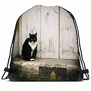KAKALINQ Drawstring Backpack String Bag Vintage Black White Cat Sitting On Grungy Doorstep Calm Animals Wildlife Abandoned Rights Welfare Atmosphere Sport Gym Sackpack Hiking Yoga Travel Beach