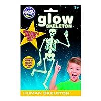 The Original Glowstars Company B8007 The Glow Human Skeleton,