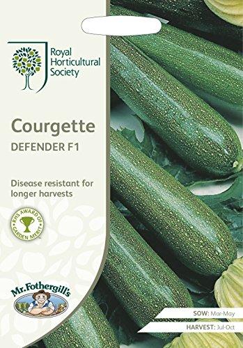 Mr Fothergills-Légumes-Aubergine-Jewel JET F1-10 graines