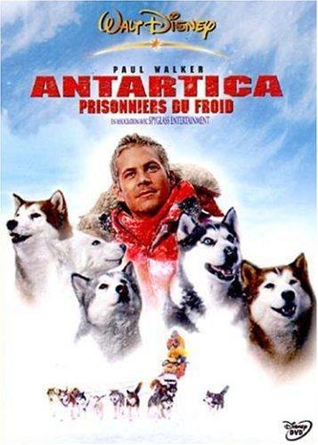 antartica-prisonniers-du-froid