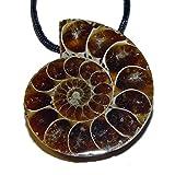 Ammonit Anhänger mit Bohrung Nr. 3796 ca. 30 x 25 mm mit schwarzem Band (3796)