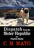 Dispatch from the Sister Republic or, Papelito Habla: An essay on the Mexican literary landscape and the power of the book