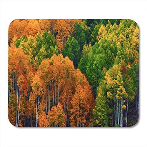 Deglogse Gaming-Mauspad-Matte, Aspen Trees of The West Elk Mountains in Colorado Mouse Pad, Desktop Computers mats -