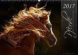 Pferde - Anmut und Stärke gepaart mit Magie (Wandkalender 2017 DIN A2 quer): Fotos aus Liebe zum Detail (Monatskalender, 14 Seiten) (CALVENDO Tiere)