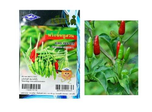 thai-birds-eye-chilli-seeds-prik-khee-nu-suan-grow-your-own-organic-thai-herbs-106-quality-seeds