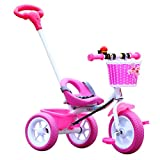 Qianle Kids Child Children Trike Tricycle Tricycle Ride On Tribike 1 Set Pink