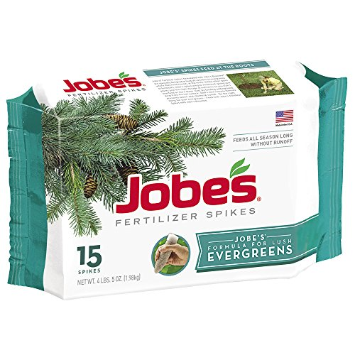 Evergreen Spikes (Jobe's 1611 Evergreen Outdoor Fertilizer Food Spikes, 15 Pack)