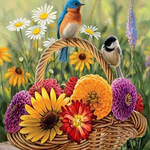 socoola diamante ricamo fiori camomilla uccello 5d pittura diamante diy mosaico home decor round 30 * 40 cm