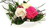 Fiori–Composizione floreale in tre dell' eterno-Rose Rose contiene tre vera Premium konservierte colore rosa, rosa e champagne–Unser esclusivo fiori Flash Arrangement viene realizzato a mano e con amore
